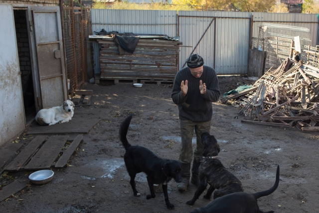 Про своих собак Шамарин может говорит бесконечно. Он знает их истории, нравы и повадки, он разговаривает с ними, поет незамысловатые песенки, называет их по имени или просто «мальчуган» или «девчушка».