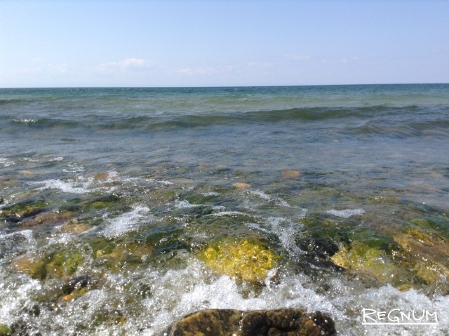 Байкальскую воду — китайцам: как стать умнее лягушки?