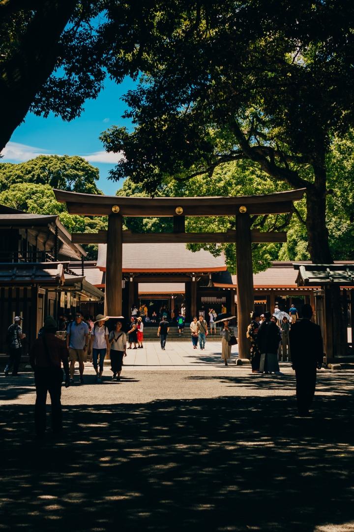 Священные ворота (тории) при входе в синтоистский храм Мейдзи
