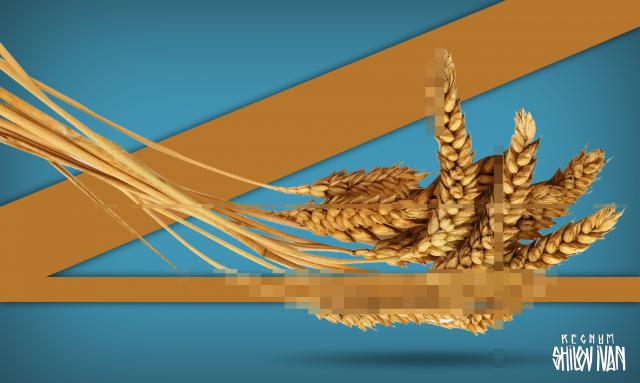 Россия может передать КНДР 50 тыс. тонн пшеницы в качестве гумпомощи