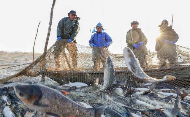 Китайские рыбаки