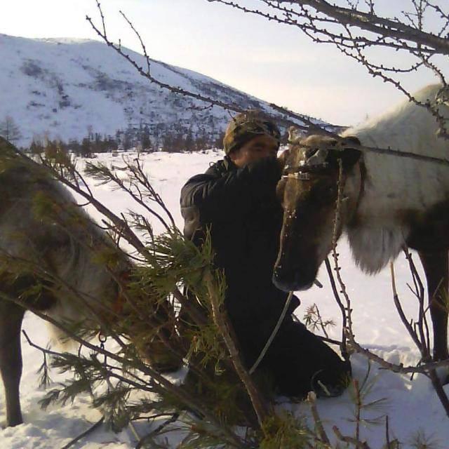 Эвенк Андрей Адуканов пасет на Камчатке своих оленей и очень надеется на помощь президента России
