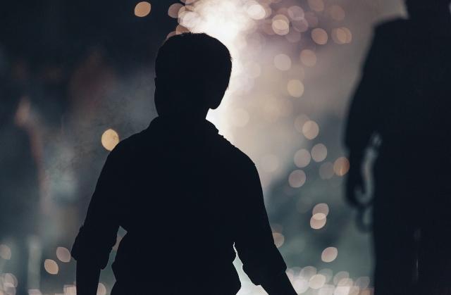 Мальчика, блуждавшего ночью по Лосиному Острову, передадут под опеку