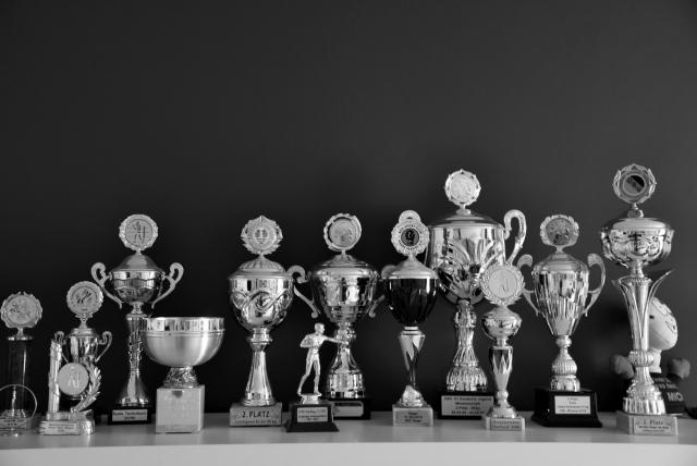Комната Кати. Кубки и статуэтки, привезённые с многочисленных соревнований