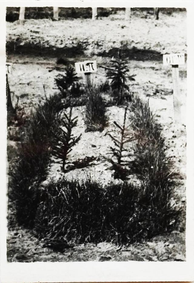 Подлинная дата кончины Льва Карсавина