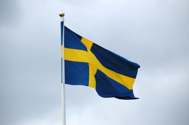 Нейтральный статус Швеции «режет глаза» США и НАТО — военный эксперт