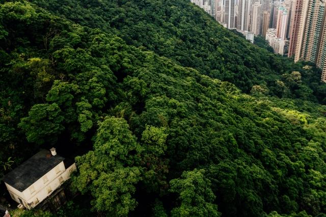 Зримая и несмываемая двойственность Гонконга