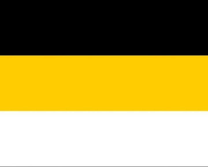 Официальный флаг Российской империи с 1858 по 1896 гг., популярный у современных монархистов в России