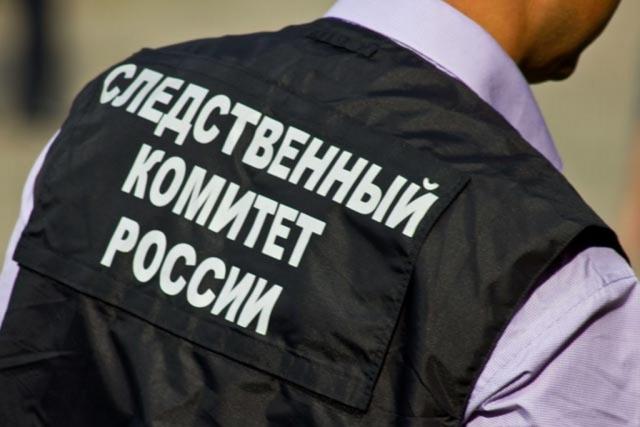 СКР Магаданской области начал проверку после нападения собак на ребёнка