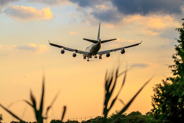 Boeing больше не падает — акции компании поднялись в цене