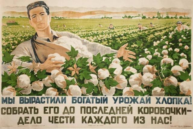В Туркмении планируют собрать более 1 млн хлопка