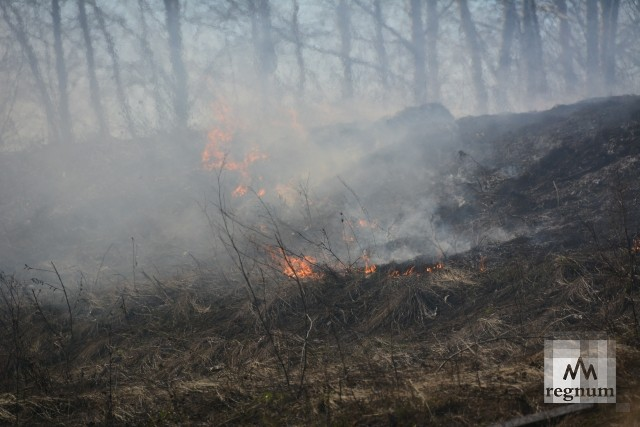 В Калужской области пал сухой травы грозит лесными пожарами