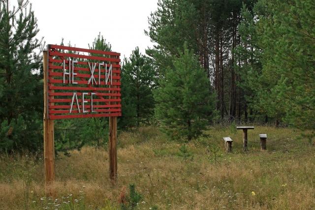 В Забайкалье вводят ограничение на пребывание граждан в лесах