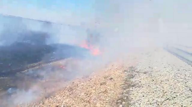 Забайкалье в огне: 114-й разъезд в Оловяннинском районе никто не тушит