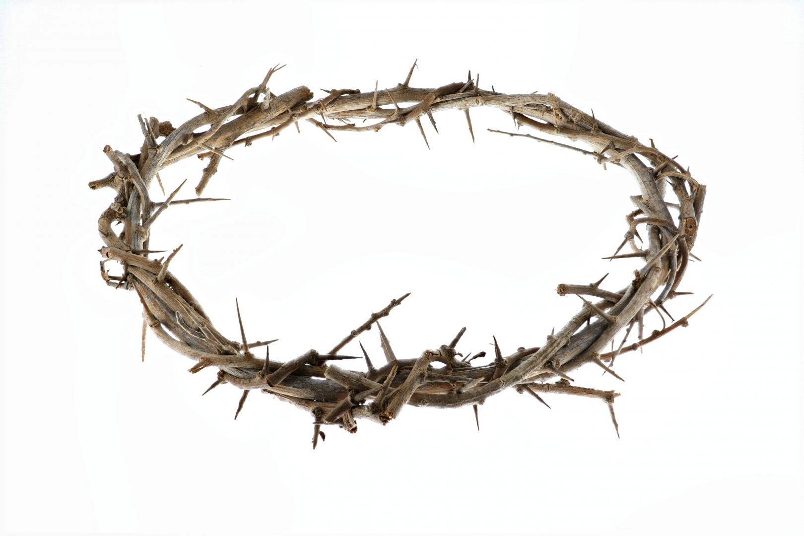 терновый венец христа картинка молчу
