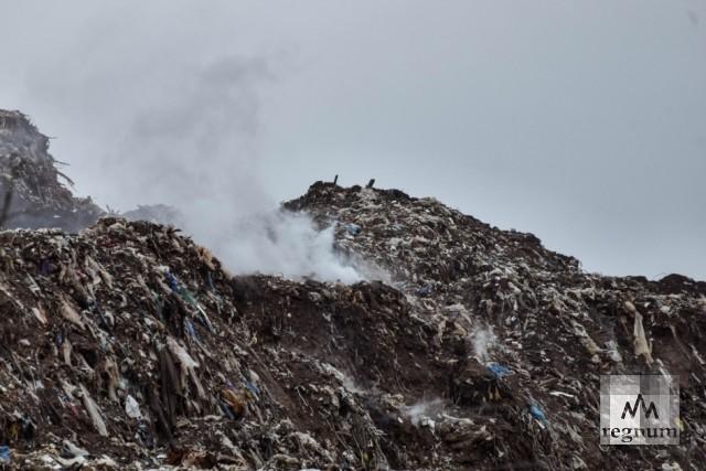 В Подмосковье загорелся полигон твёрдых бытовых отходов