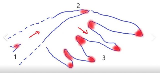 Схема распространения пожаров в Даурском заповеднике напоминает «длань карающей природы»