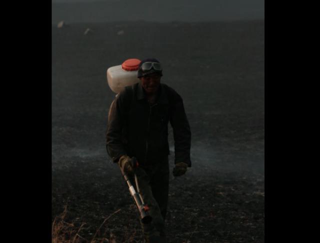 Государственный заповедник «Даурский». На линии огня