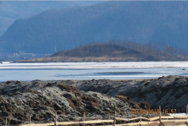 Территорию остановленного на Байкале китайского завода заселили птицы