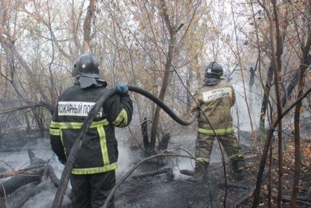 Пал травы в Хабаровском крае стал причиной возгорания хозпостроек