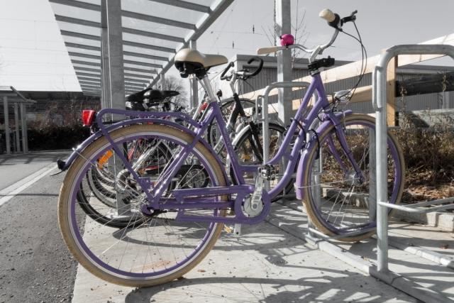 Велосипедное движение на набережной Камы в Перми: быть или не быть?
