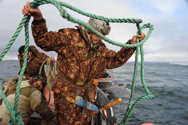 Фрагмент подготовки к буксировке добытого на охоте кита