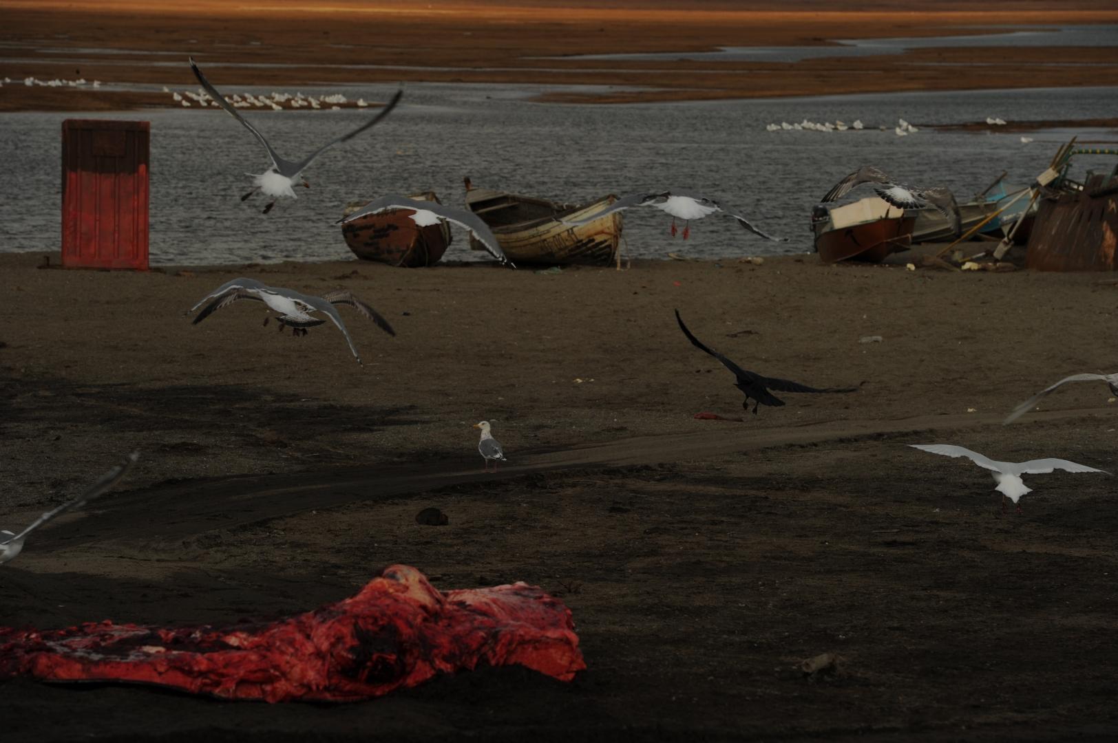Фрагмент побережья с лодками для охоты