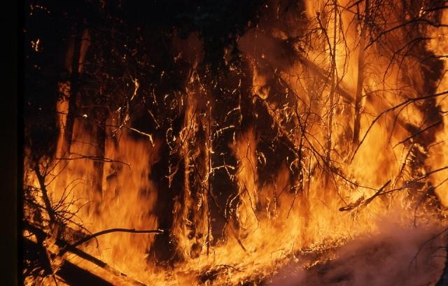 В китайской провинции Юньнань вновь разгорелся лесной пожар
