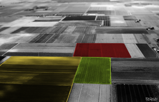 Начинающим фермерам Зауралья планируют раздать по 100 га пашни