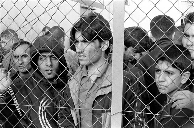 Трамп хочет отвадить мигрантов от планов прижиться в США при помощи детей