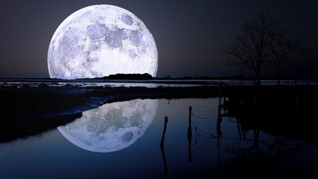 Стало известно, когда NASA возобновит изучение грунта и газов с Луны