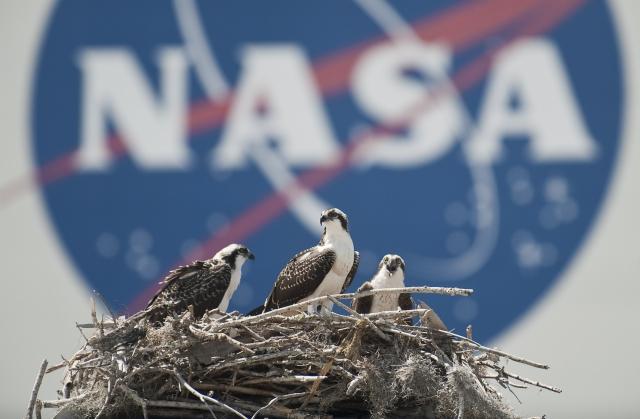 Asia Times: Как именно США намерены вернуться на Луну?
