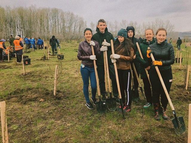 Акция «Всероссийский день посадки леса» в Забайкальском крае