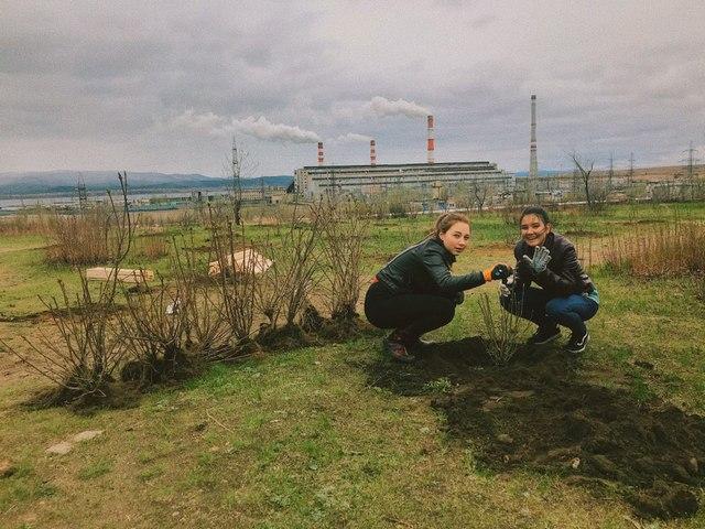 «Всероссийский день посадки леса» в Забайкалье