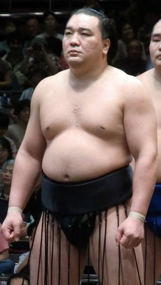 Великий чемпион Харумафудзи — монгол по национальности