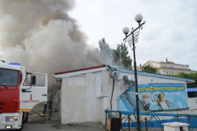 Пожар произошел в севастопольском дельфинарии