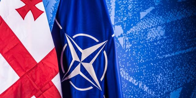 США и Грузия приняли документ исторического значения — Бахтадзе