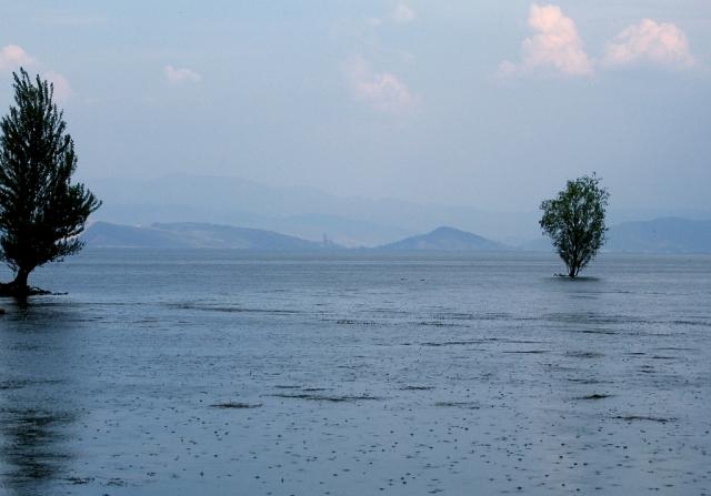 В провинции Гуанчжоу на юге Китая от наводнений погибли 13 человек