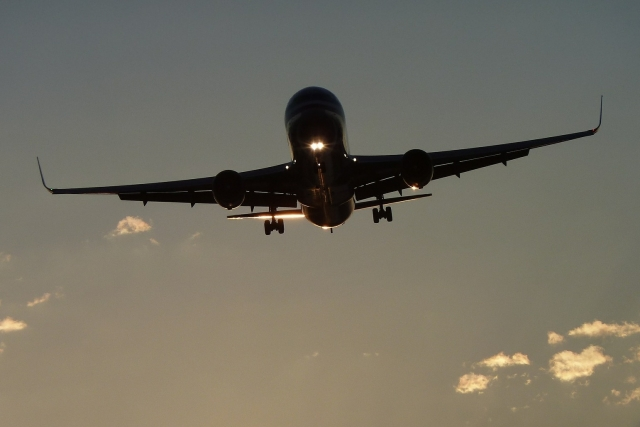 Самолет рейса «Москва — Алжир» вынужденно вернулся в аэропорт