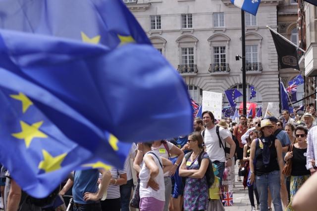 Противники Брекиста в Лондоне