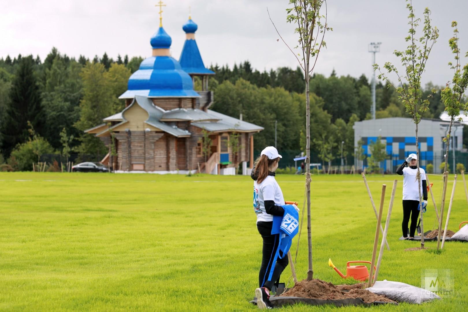Посадка деревьев на Аллее спорта