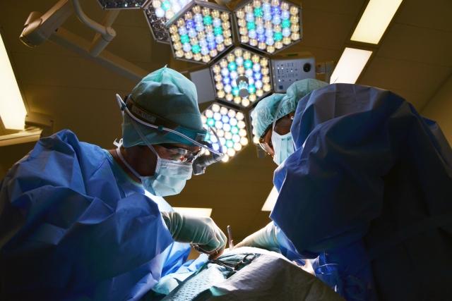 В Чехии упростили изъятие органов у умерших иностранцев