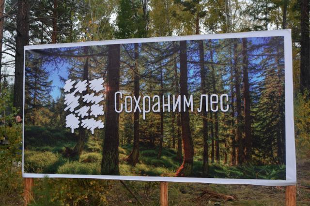 Акция «Живи, лес!» в Забайкальском крае