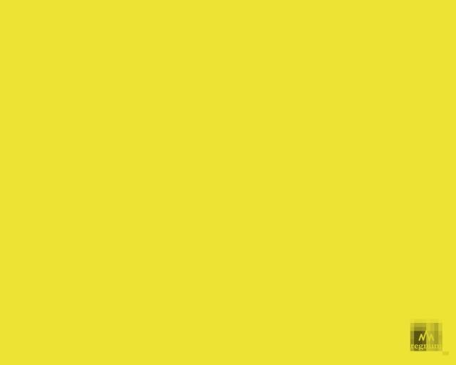 Эдуард Лимонов. Осенью в Париже и Нанте: жёлтые жилеты