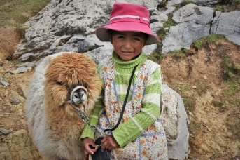 Девочка народа Аймара с альпакой. Остров Солнца, Боливия