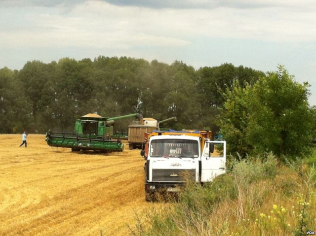 Сельское хозяйство на Украине