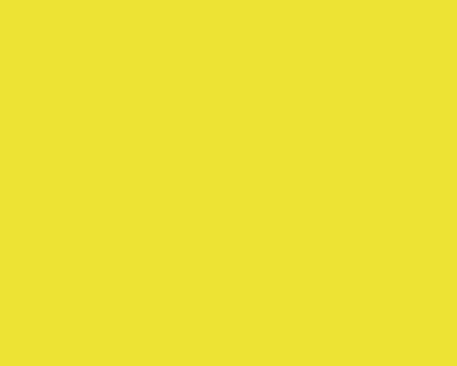 Жёлтый жилет