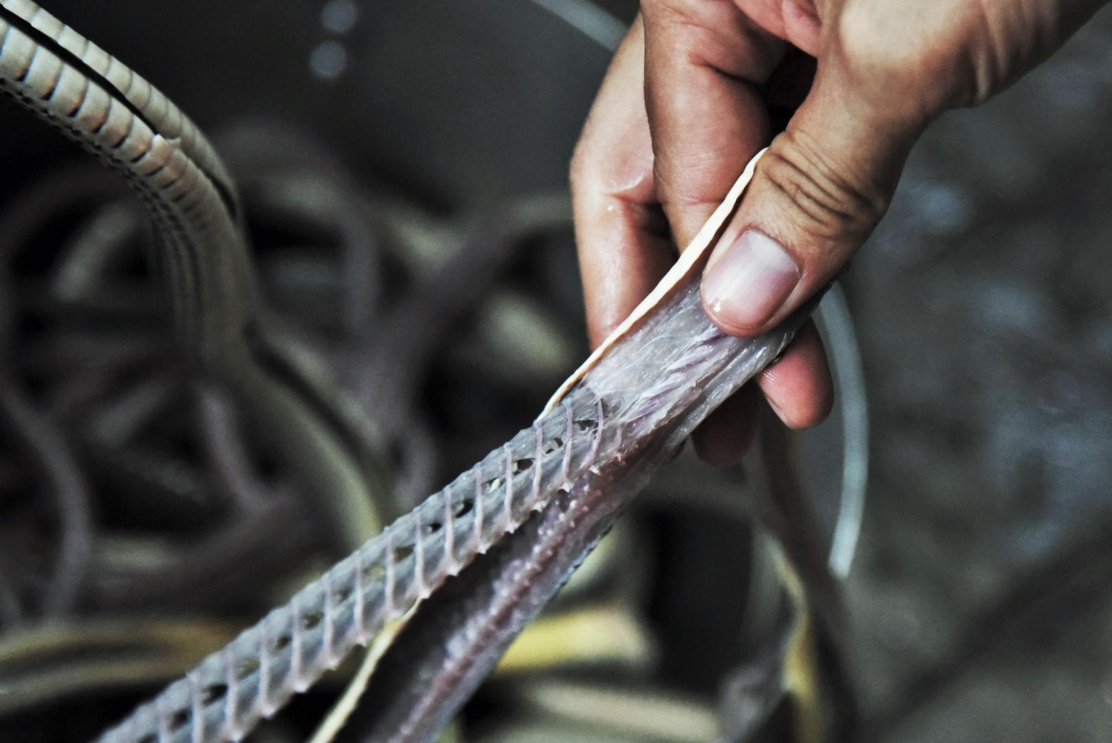 Кожу змеи отдирают одним куском. Мясо отделяется от костей, которые также используются в приготовление блюд. Наиболее популярным блюдом является рисовая каша со змеиными косточками