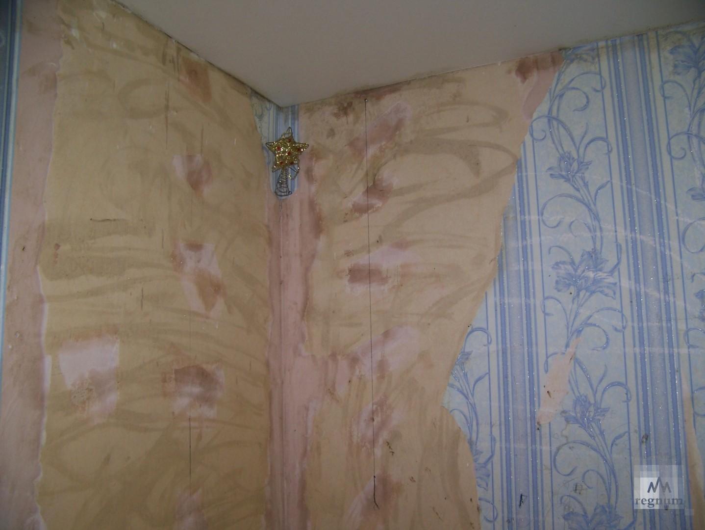 Украшения для стен домов на улица Спекова: карандаш от тараканов