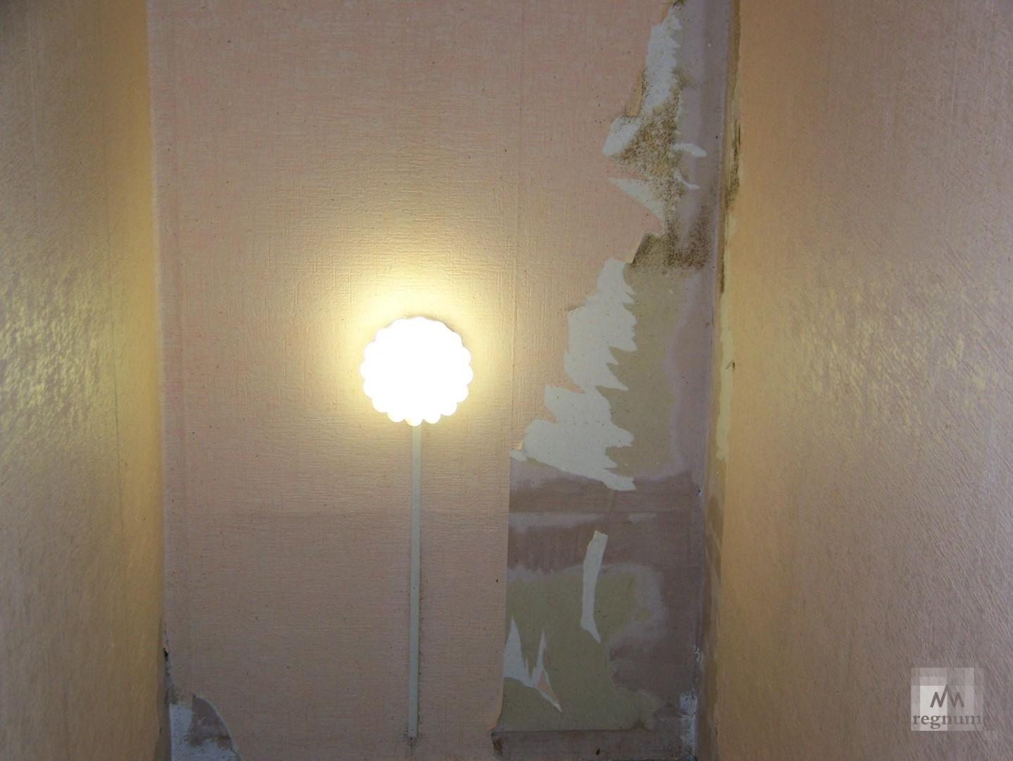 Коридор и комната в одной из квартир на улица Спекова одинаковых размеров